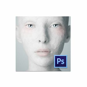 Adobe Photoshop CS6 Multiple Platforms International English AOO License 65158382AD01A00