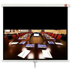 Avtek Cinema 240 (projection area 230x129,5cm; 16:9; Matt-White; black borders)