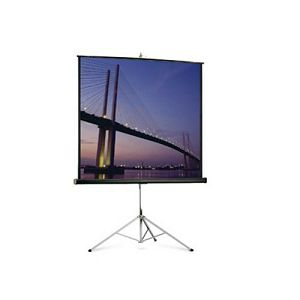 Projecta Picture King 244x244 cm. Matte White