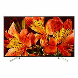 TV Sony KD-43XF8596, 43