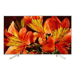TV Sony KD-49XF8577, 49